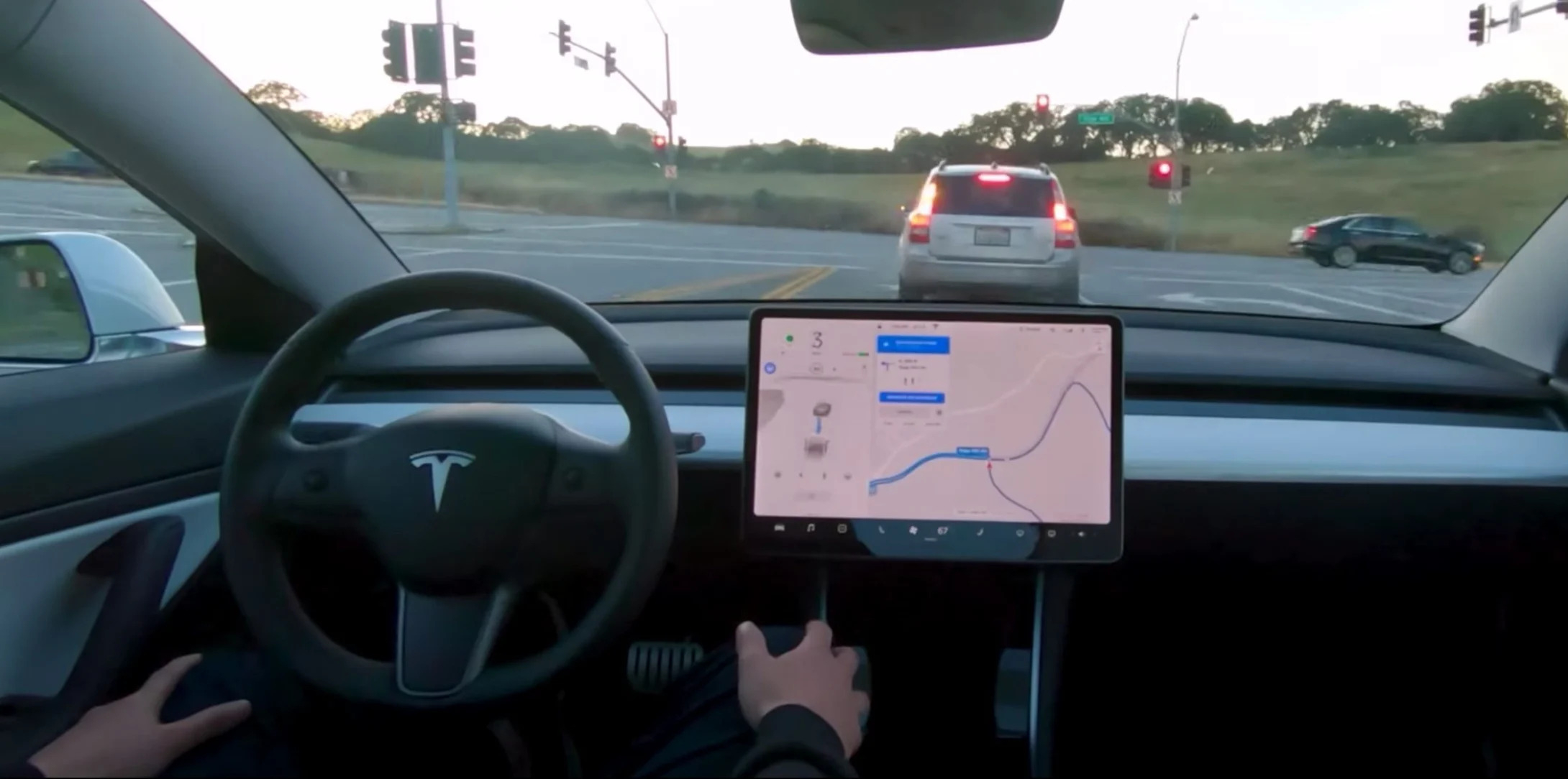 Tesla FSD MisterGreen